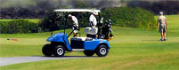 Golf Cart Insurance
