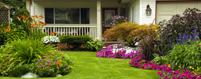 Arborists Contractors Insurance