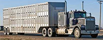 Livestock Transit Coverage