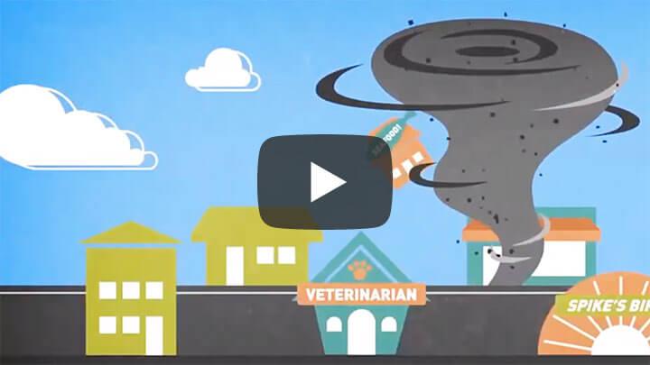 Business Insurance Video