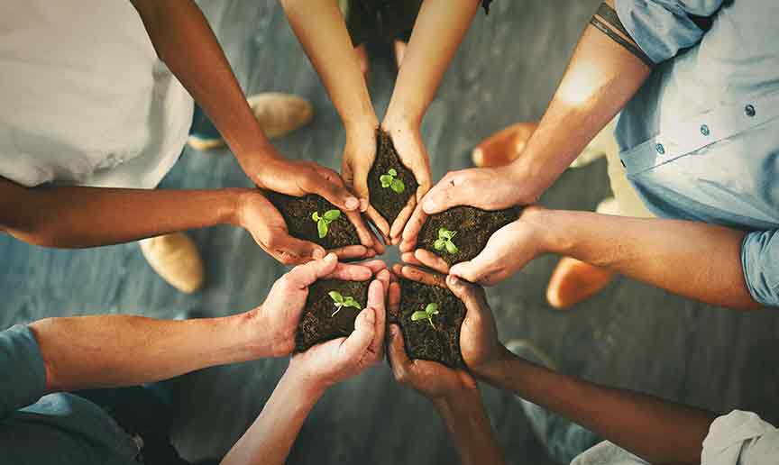 The Decision to Go Green With Your Business
