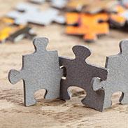Access Advantage Partnerships