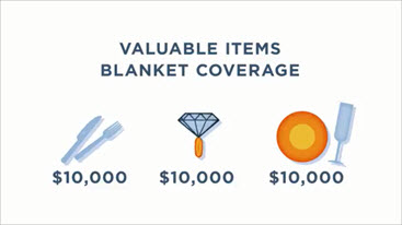 Valuable Items Blanket Coverage