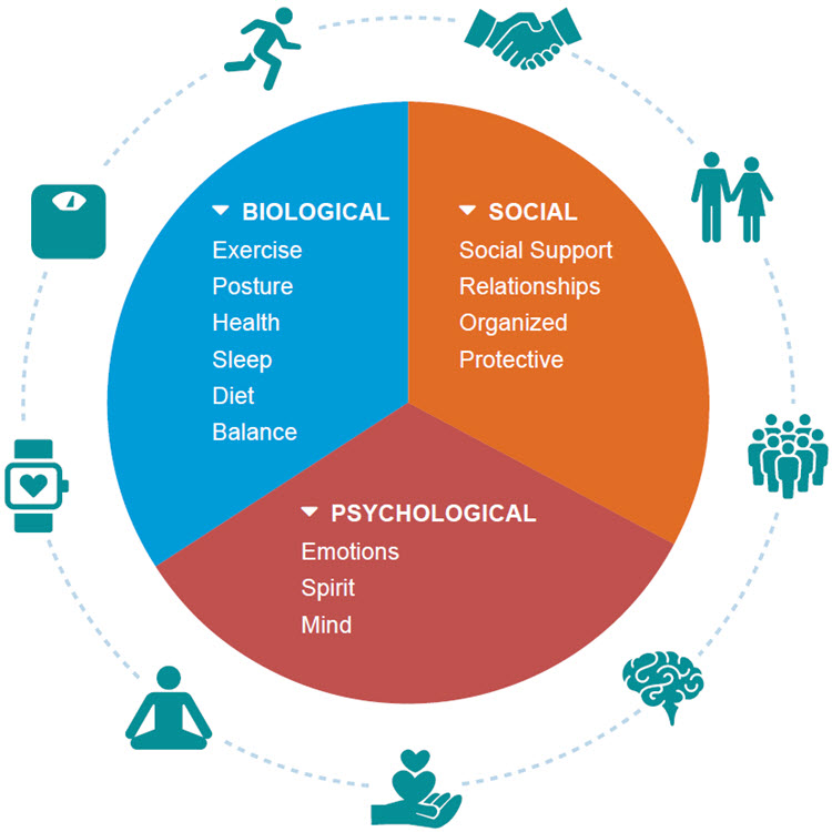 Infographic showing biological, social, and psychological risk factors that can affect recovery.